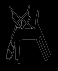 Outline 20, 2006 - Dibujo - Impresión de contacto - Plata en gelatina - 35 x 27 cm