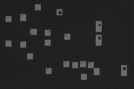 Dafne (Denom abertura), 2013 - Plata en gelatina - 80 x 120 cm