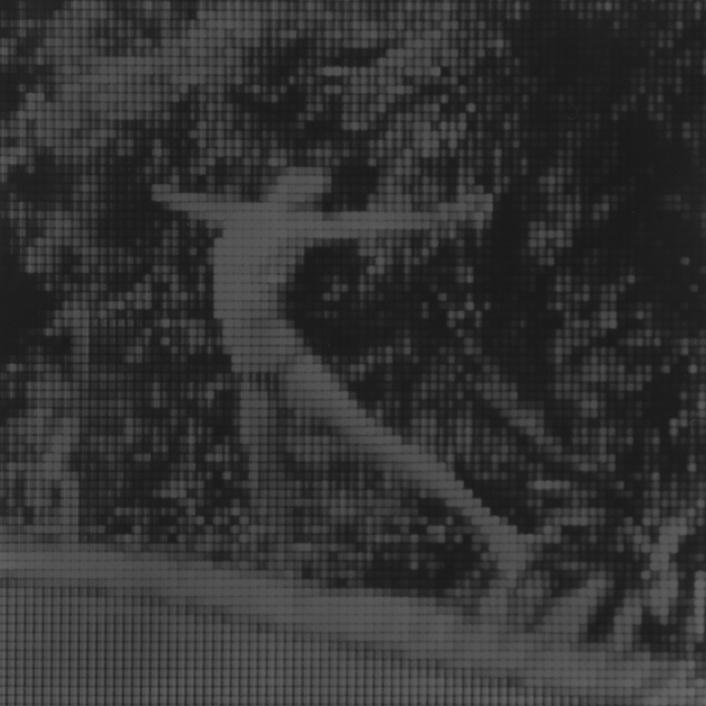 Sin título (Fran), 2015/2016 - Plata en gelatina - 25 x 25 cm