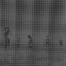 Sin título (Coaquaddus II), 2015/2016 - Plata en gelatina - 25 x 25 cm
