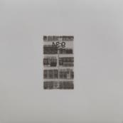 Sin título (Otras yerbas), 2015/2016 - Plata en gelatina - 25 x 25 cm
