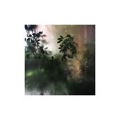 La doble vida II (VIII), 2017- Fotografía color -15 x 10 cm