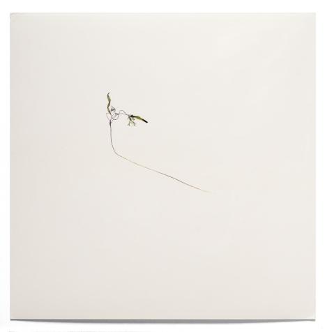 Sin título III, 2000 - Fotograma sobre Cibachrome - 14 x 14 cm - Pieza única