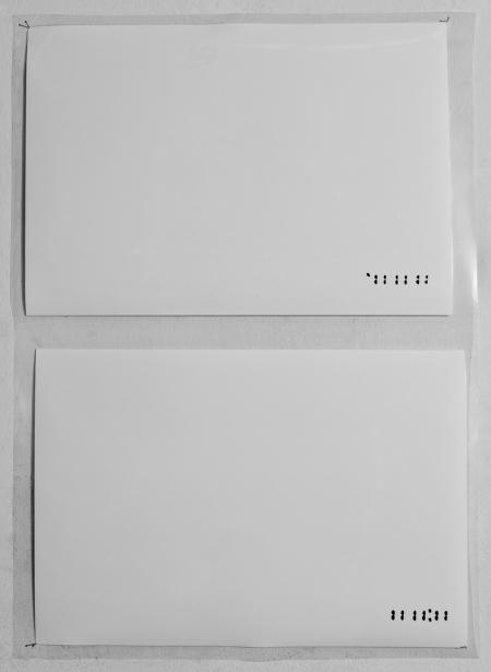 White databack, 1998 - Fotografía color - Laminado - Medidas variables