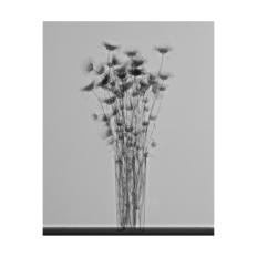 RX-5-2, 2017/2018 Impresión Giclée - 40 x 30 cm