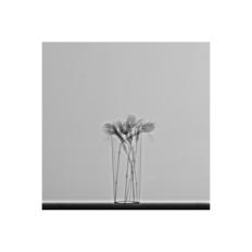 RX-5-4, 2017/2018 Impresión Giclée - 40 x 30 cm