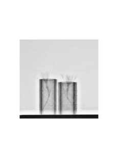 RX-6-2, 2017/2018 Impresión Giclée - 40 x 30 cm