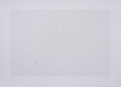 Sin título N° 9. 2019. Impresión sobre plata en gelatina, tintas de retoque.