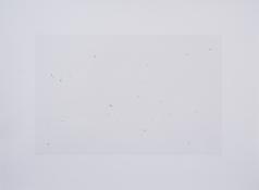 Sin título N° 4. 2019. Impresión sobre plata en gelatina, tintas de retoque.