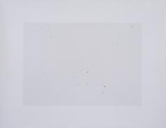 Sin título N° 5. 2019. Impresión sobre plata en gelatina, tintas de retoque.